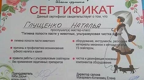 сертификат грумера